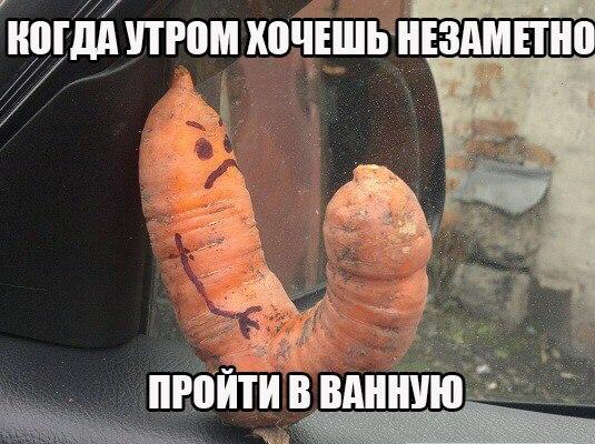 fDfzQ2FbQNk - Рынок. Два грузина торгуют шашлыками...