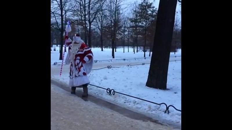 Дед Мороз СПб. В Питере. В детский сад, на дом, на корпоратив, во двор, а школу! 8(812)943-45-99