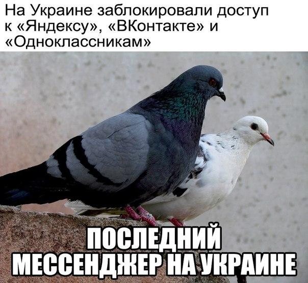 Фото №456256703 со страницы Максима Месова