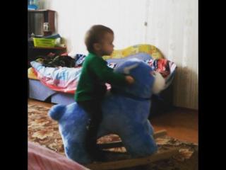 Сел Дениска на медведя, и поскакал 😂