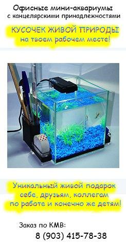 Офисные мини аквариумы с канц. принадлежностями и рыбкой в комплекте!
