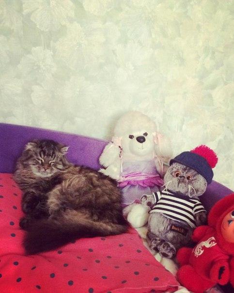 фото из альбома Екатерины Катиной №3