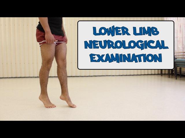 Lower Limb Neurological Examination OSCE guide New Version