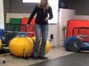 Спортивная собака, день 2, Варвара Большакова Подготовка проводника