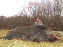 Охота на кабана из засидки! Первоклассная охота.
