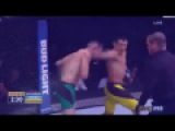 UFC VINES 5_ By NEW