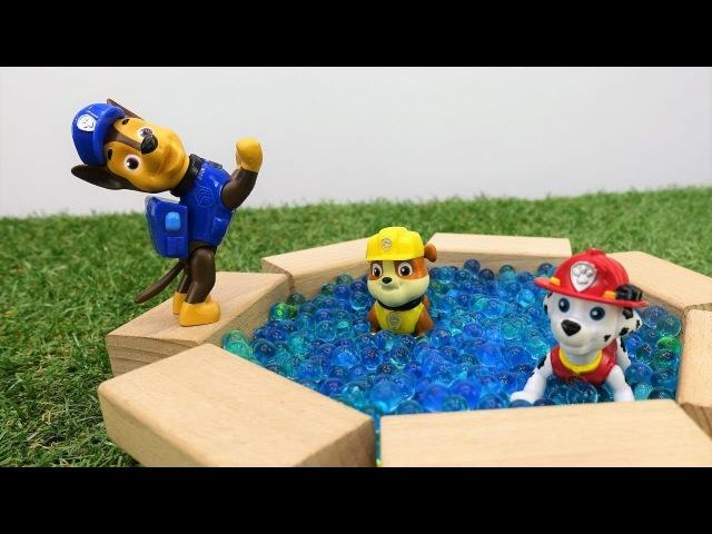 🐾 Paw Patrol baut einen Pool 🏊 Spielspaß mit Paw Patrol Toys 🐶 Paw Patrol Video auf Deutsch