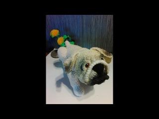 Английский бульдог или Мопс,ч.1. English Bulldog оr Pug, р.1. Amigurumi. Crochet.