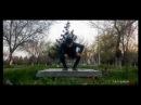 Turkmen yigidi Yaran Charyyev 8 nji mart guni