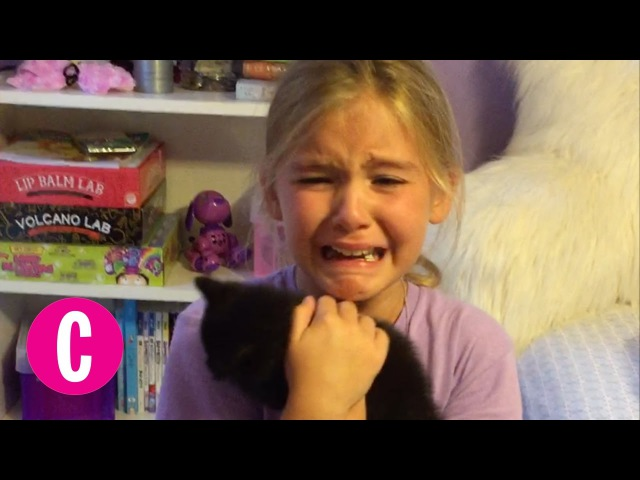 Little Girl is Surprised With a Brand New Kitten