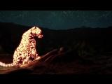 Ana Caprix  Flashlite ft. I-Octane (majikk world volcanos)