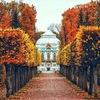 В Пушкине | Подслушано