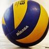 Товарищеские волейбольные игры