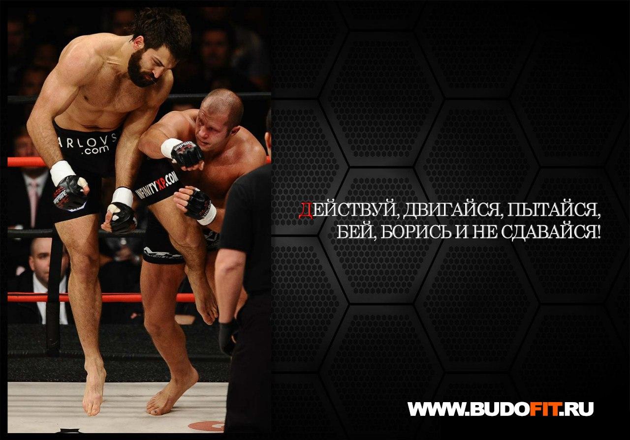 Мотиватор: Действуй, двигайся, пытайся, бей, борись и не сдавайся! На фото Емельяненко и Орлов