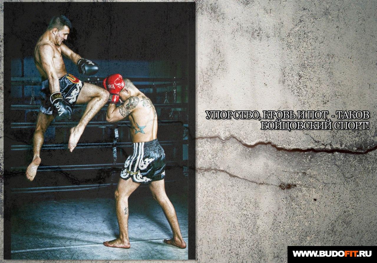 Мотиватор: Упорство, кровь и пот - таков бойцовский спорт! На фото удар коленом в тайском боксе