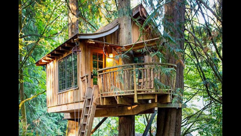 никогда не было дома на дереве?