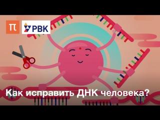 Как исправить ДНК человека?