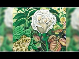 Сказка о жабе и розе, Всеволод Гаршин аудиосказка онлайн