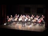 M.Giuliani - Concert No.1 Op.30 - Aniello Desiderio