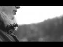 Straight Edge - Живая ель дома - мертвый лес