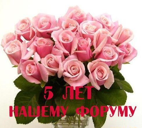 https://pp.userapi.com/c836633/v836633376/45eba/ffa1tNsigP4.jpg