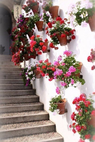 YByxxKIPTDU - Цветущие пейзажи Испании