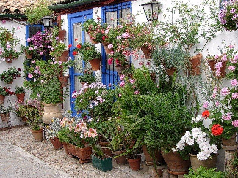 DqNiJNOKEKY - Цветущие пейзажи Испании