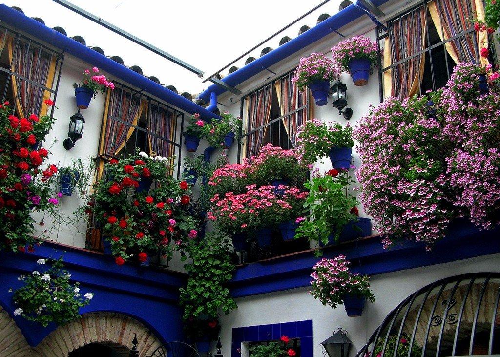 b L  UpLndc - Цветущие пейзажи Испании