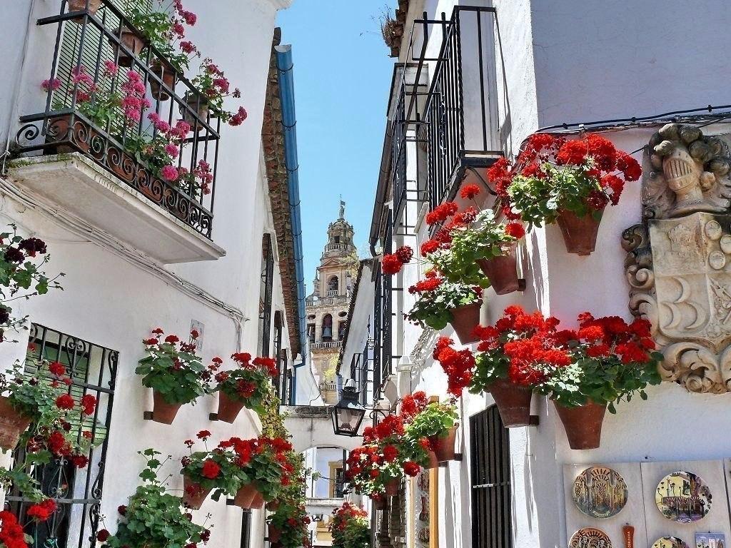 dF2Q7XrHDk4 - Цветущие пейзажи Испании