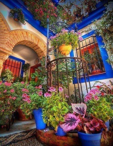 bz3Kuo5GodA - Цветущие пейзажи Испании