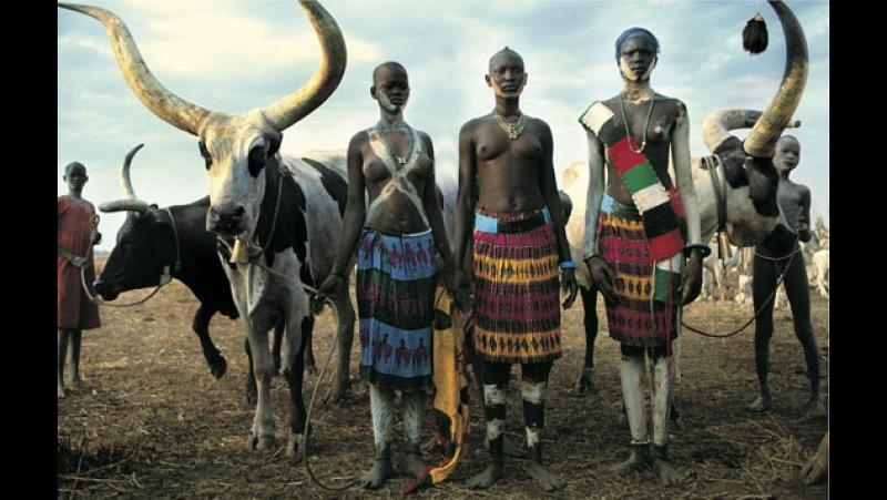 Племена Африки. Динка / Этнография