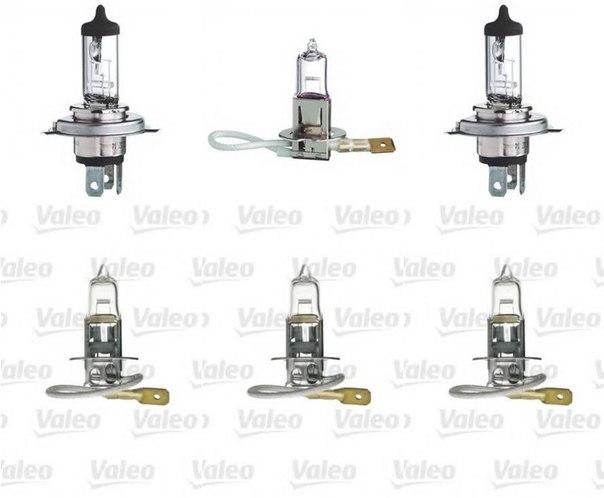 Лампа накаливания, противотуманная фара; Лампа накаливания, основная фара для AUDI V8 (44_, 4C_)