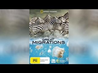 Великие миграции (2010) | Great Migrations