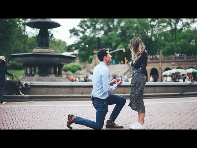 OUR PROPOSAL! Sierra Alex