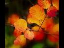 Autumn from Alexander Glazunovs The Seasons