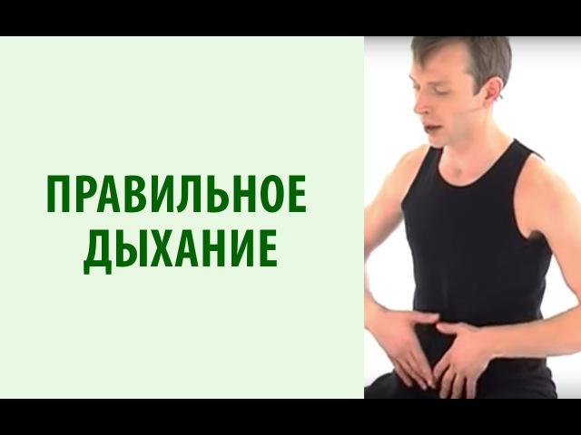 Йогатерапия с Вячеславом Смирновым Правильное Дыхание