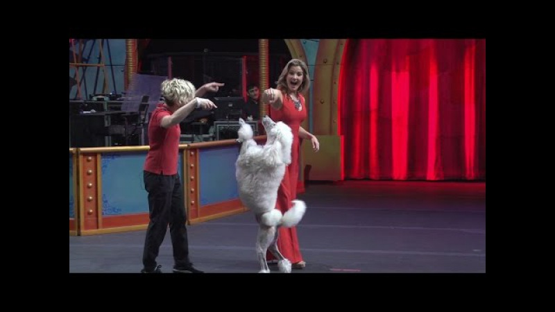 Today with Kandace - Ringling Bros. and Barnum Bailey Circus Extreme (Dallas, TX)