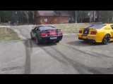 mustang burn out