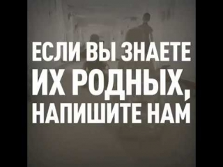 Кадыров опубликовал видеоролик с просьбой RT помочь найти родных возвращённых из Мосула детей