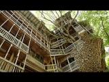 Самый большой в мире дом на деревьях