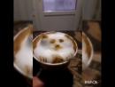кавовий котик моє перше творіння