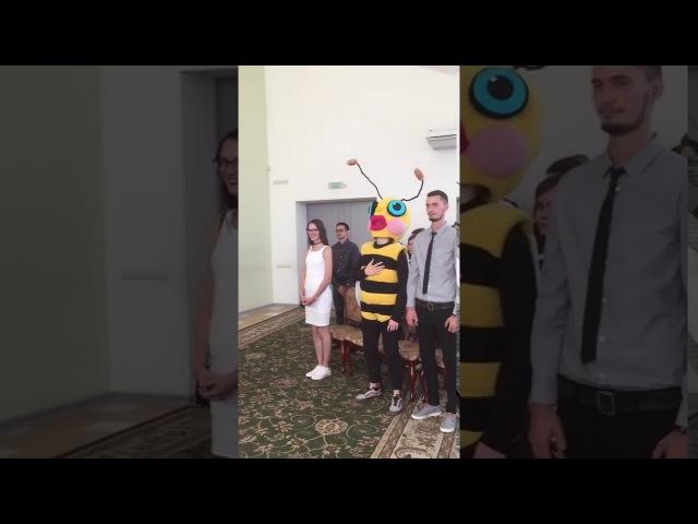 Гость в костюме пчелы на челнинской свадьбе