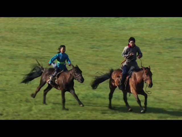 Монголия Лошади Монгольские ковбои Horse
