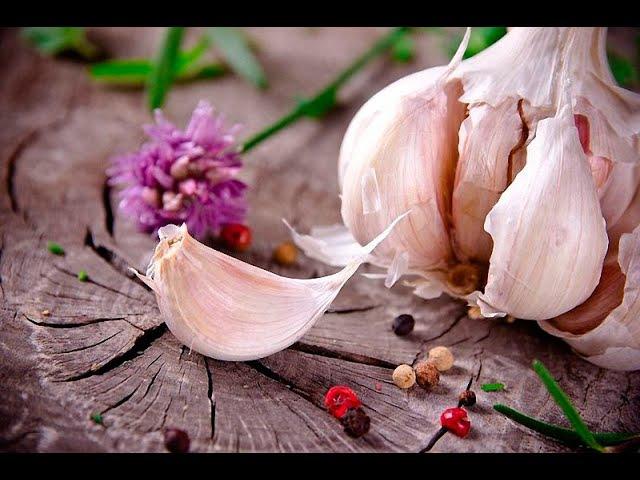 Шелуха чеснока Стоит ли выбрасывать Уникальные целебные свойства шелухи чеснока 16 рецептов лечени