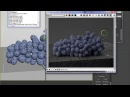 How to create procedural grape texture in 3ds Max and V ray