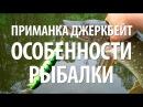 ПРИМАНКА ДЖЕРКБЕЙТ ЛОВЛЯ ХИЩНОЙ РЫБЫ на ДЖЕРКБЕЙТЫ