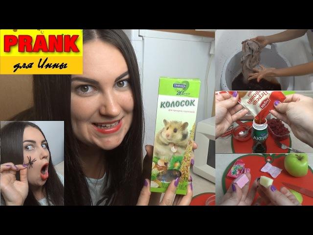 ПРАНКИ для Инны №3 Стиральный порошок с какао, шоколадка из корма для грызунов