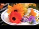 Edible Garden 5 Flowers Herbs - Homesteading Self-Sufficiency