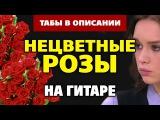 Enjoykin feat. Диана Шурыгина – Нецветные розы (на акустической гитаре, fingerstyle guitar tabs)