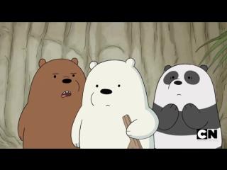 Мы обычные медведи 2х11